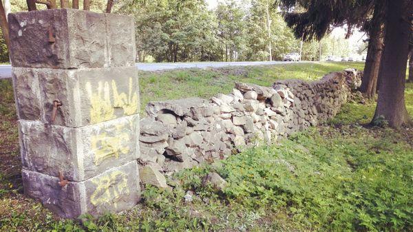 Сортавала: столица Ладоги