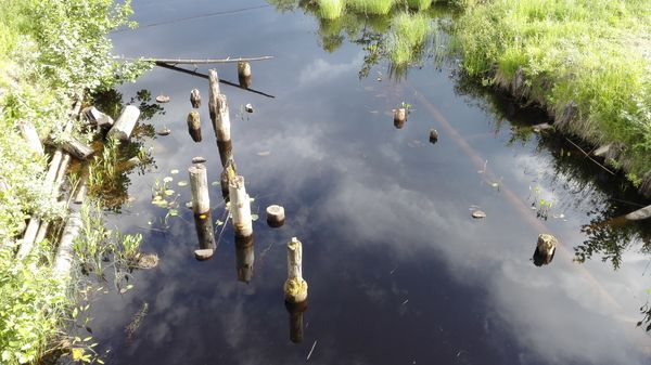 Прионежье: вепсский берег