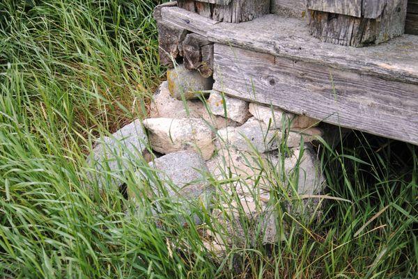 Каргополь: медвежий угол