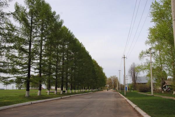 Сокольский район: дорога вдоль моря