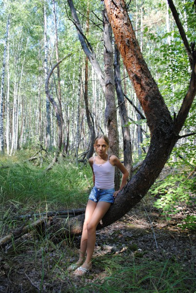 Скрюченные елки или Бешеным собакам 7 верст не крюк